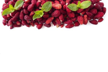 Fresh strawberries lay on white background. Background of wildberries. Ripe wild strawberry on a white background. Wild strawberries with copy space for text. Top view.