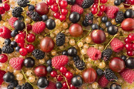 Background of fresh berries and fruits. Ripe mulberries, blueberries, currants, gooseberris and raspberries. Mixed berries and fruits.Top view.Background berries and fruits.Various fresh summer fruits