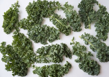 Kale leaves on white background. Top view. Kale leaves with copy space for text. Background of kale leaves. Kale on white background.