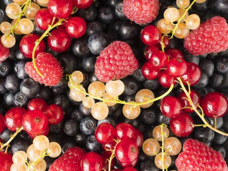 Ripe bilberries, blueberries, currants, and raspberries. Mixed berries and fruits. Background of fresh berries and fruits. Top view. Background berries and fruits. Various fresh summer fruits.