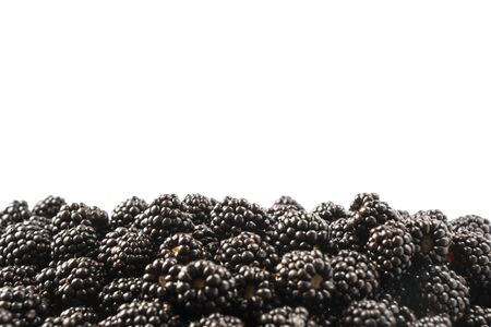 Top view. Ripe blackberries on white background. Berries at border of image with copy space for text. Ripe blackberry close-up. Sweet and juicy berry. Heap of blackberries on white. Black food. Imagens