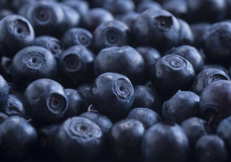 Macro photo. Fresh blueberry background. Ripe bilberry background. Texture bilberry berries close up. Top view.Bilberries picked in forest. Immunity system improvement. Antiviral treatment.
