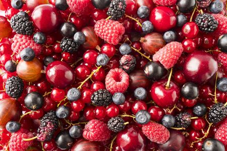 Background of fresh berries and fruits. Ripe red currants, bilberries, mulberry, gooseberries, blackcurrants and raspberries. Mixed berries and fruits. Top view. Background berries and fruits. Immunity system improvement. Antiviral treatment. Coronavirus prevention