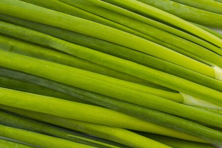 Top view. Green onion feathers. Background of onion feathers. Fresh onion background. Texture green onion feathers close up. Immunity system improvement. Antiviral treatment. Coronavirus prevention. Imagens