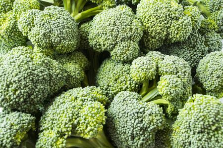 Broccoli in a pile on a market. Broccoli in a pile on a farm stand. Fresh Broccoli in a pile at supermarket. Fresh and ripe broccoli background.