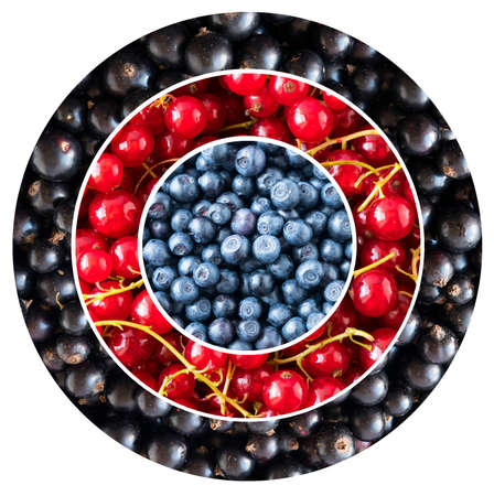 Blueberries, black and red currants in the shape of a circle. Berries for infographics. Fresh berries closeup. Imagens