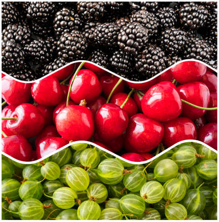 Fresh berry background. Top view. Blackberries, cherries and gooseberries in the shape of a circle. Berries for infographics. Fresh berries closeup.