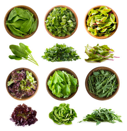 Leafy vegetables isolated on white. Spinach leaves, parsley, swiss chard (mangold or beet leafs), lettuce, arugula. Vegetables with copy space for text. Top view. Studio photo. Fresh leafy vegetables isolate. 免版税图像