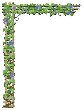Flower vine growing on treliis Stock Vector - 5734638