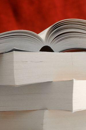 novel: Novel Idea
