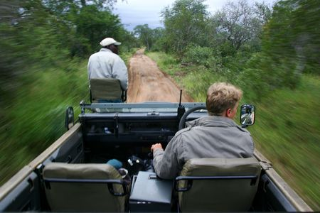 African Safari Drive Stock Photo - 2597765