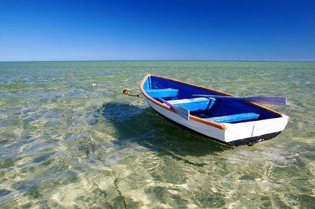 rowing boat: Australian Seascape