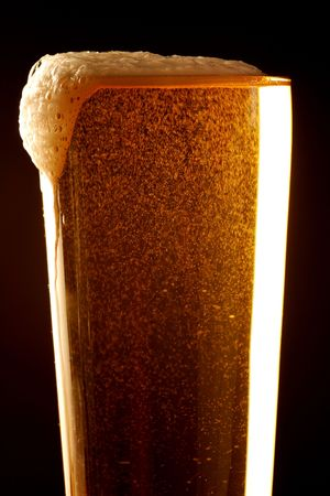 Golden Beer Stock Photo - 3042815