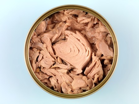 springwater: Cans of Tuna isolated against a blue background Stock Photo