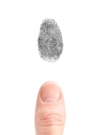 fingermark: A finger print isolated against a white background