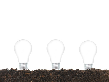 Garden soil and light bulbs isolated against a white background photo