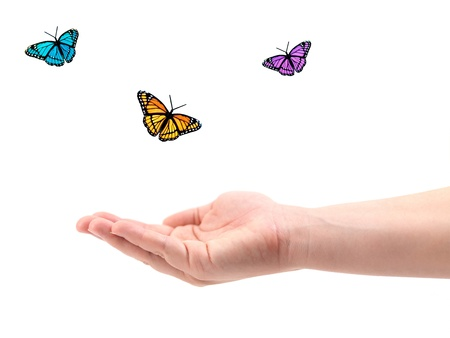 manos abiertas: Una mano femenina con mariposas aislado contra un fondo blanco Foto de archivo