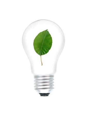 A light bulb with a leaf isolated against a white background