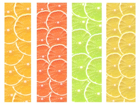 Slices of citrus fruit isolated against a white backgound Stock Photo - 10012616