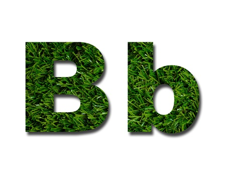 lowercase: Cutout letters of the alphabet made from grass