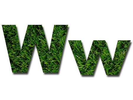 Cutout letters of the alphabet made from grass photo