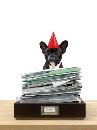 In und aus Büro-Schalen in einem Büro Situation