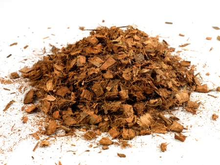 bark background: Garden wood chip mulch isolated against a white background Stock Photo