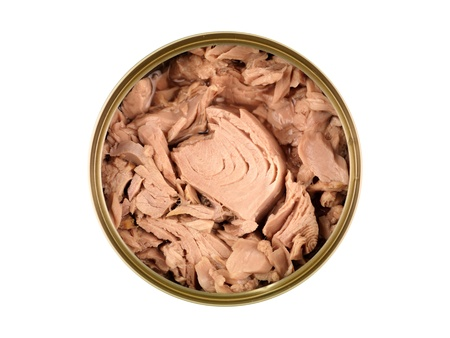 Canned tuna isolated against a white background
