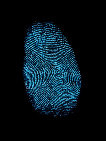 prosecution: A finger print isolated against a white background