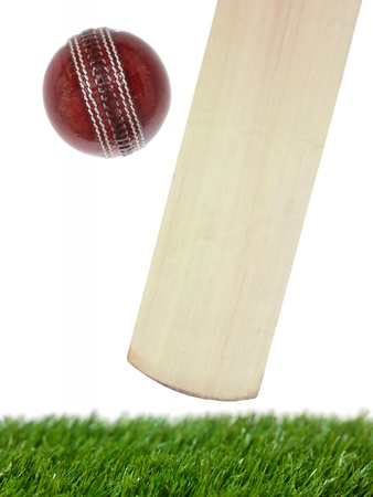 cricket ball: Cricket gear isolated against a white background