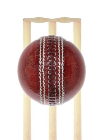 Cricket Getriebe vor einem weißen Hintergrund isoliert Standard-Bild - 12697247