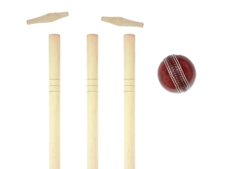 cricket stump: Cricket gear isolated against a white background