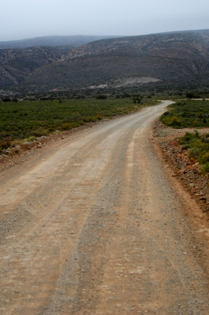 A dirt road on safari in Africa photo