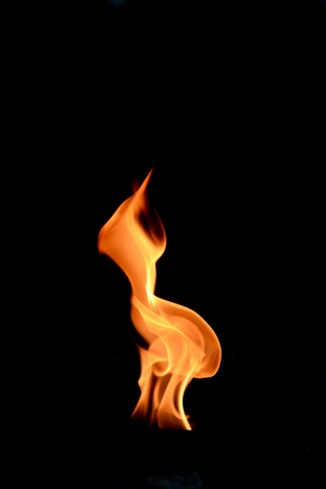 A shot of a flame on a plain background photo