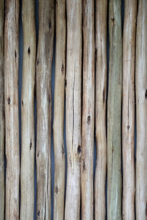 carpentry cartoon: A close up shot of a wooden privacy screen