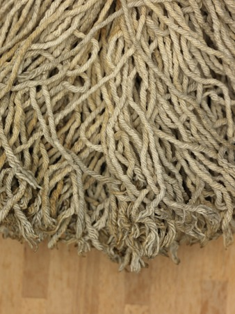 unhygienic: A close up shot of a environmentally friendly floor mop Stock Photo