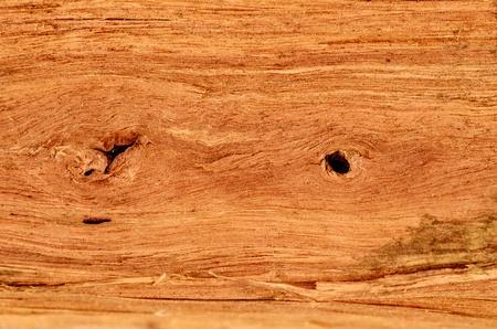 A studio photo of jarrah fire wood