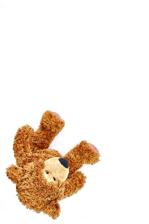 A studio photo of a toy bear Stock Photo