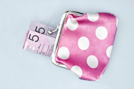 coin purse: A studio photo of a pink coin purse Stock Photo