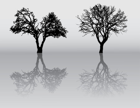 black shadow: two beautiful winter tree silhouettes, highly detailed.