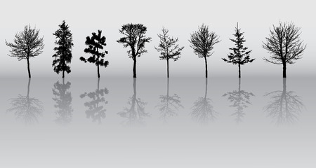 conifer: eight beautiful winter tree silhouettes, highly detailed.  Illustration