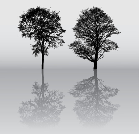 Deux belles hiver arbre silhouettes, très détaillées.  Banque d'images - 9823876