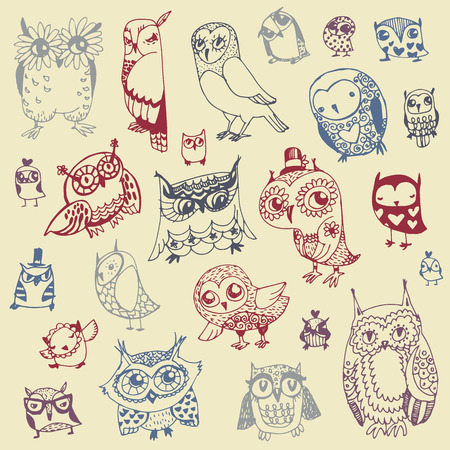 owl cartoon: Owl Doodle Collection - hand drawn - vector