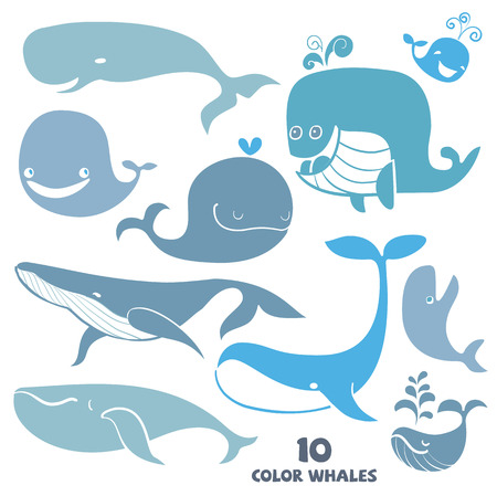 Set of cute Whale Characters  Hand drawn vector illustration  Illustration