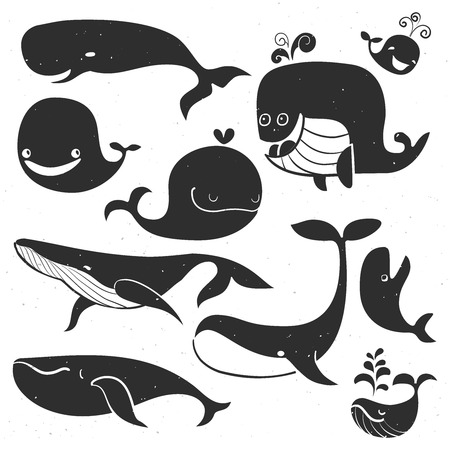 Vintage Whale Characters.  Illustration