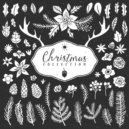 holly leaves: Chalk decorative plant items. Christmas collection. Hand drawn illustration. Design elements. Illustration