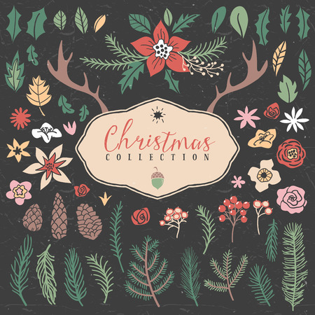 mountain ash: Decorative plant items. Christmas collection. Hand drawn illustration. Design elements.