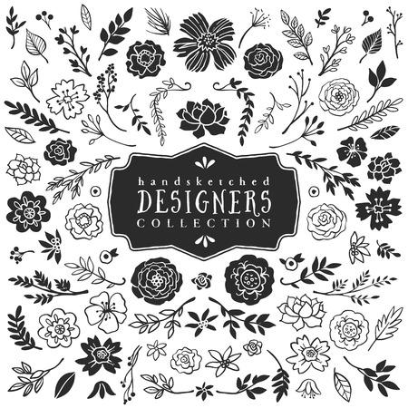 flor: Plantas decorativas de la vendimia y recolección de flores. Dibujado a mano elementos de diseño vectorial. Vectores