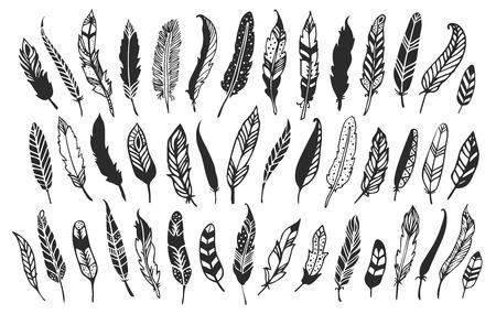 Rustic decorative feathers. Hand drawn vintage vector design set.