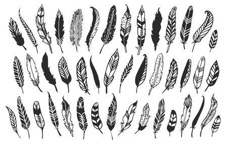 Rustic decorative feathers. Hand drawn vintage vector design set.